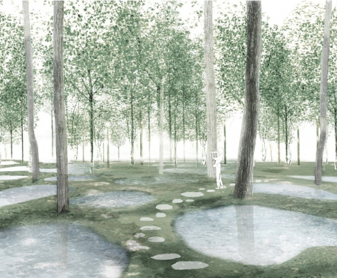 艺术生态农场(设计:石上纯也)