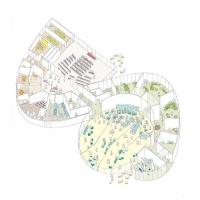 普林斯顿鲁宾斯坦下议院竞赛方案(设计:OMA)